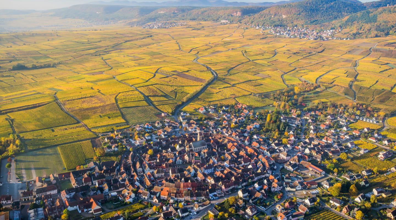 Eguisheim et le vignoble